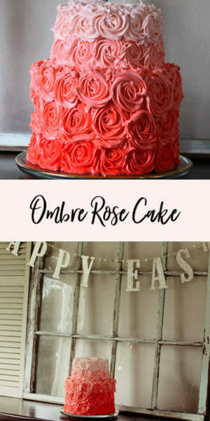 Obsessed with Ombre' | ombre rose cake | diy cake recipes | how to decorate an ombre cake | unique cake decorating tips | cake decor ideas || Jenny Cookies #ombrecake #cakedecorating #rosecake #jennycookies